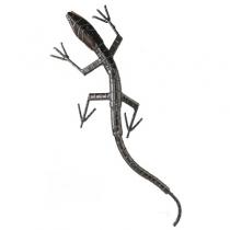 Lizard (Monitor)