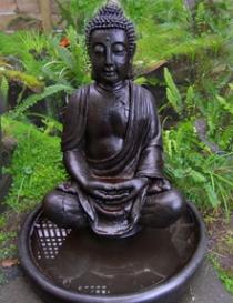 Buddha Foutain