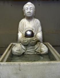 Buddha Ftn
