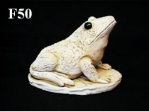 Spouting Frog