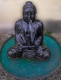 Meditating Buddha Ftn