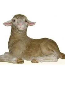 Merino Lamb # 7087
