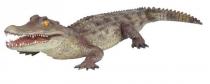 Alligator #7140