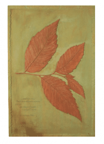 Elm Leaf Wall Plaque