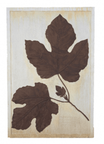 Fig Leaf Wall Plaque