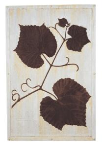 Grape Vine Wall Plaque