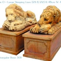 Large Sleeping Lions