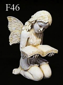 Fairy & Book